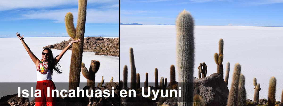 Isla Incahuasi Uyuni