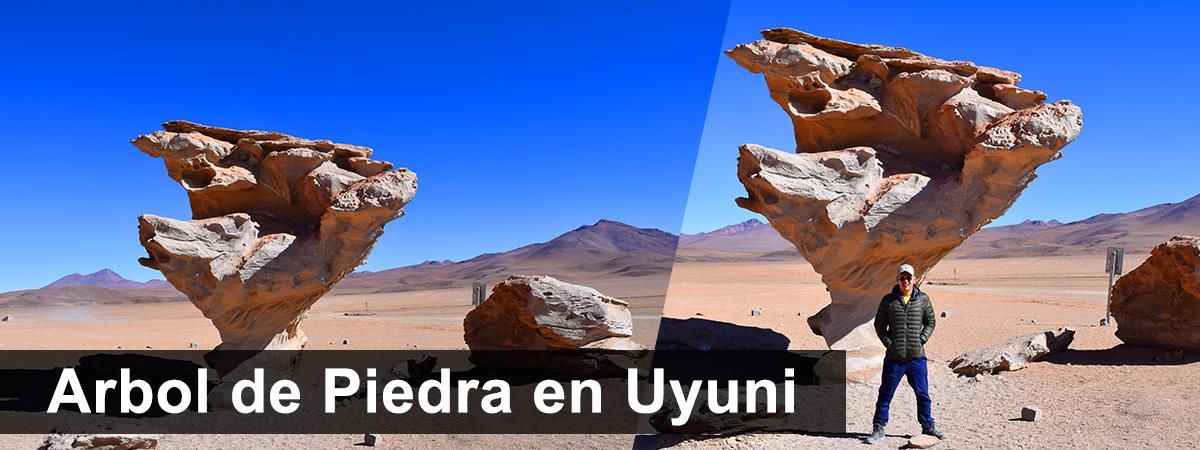 Arbol de piedra en Uyuni